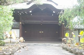201010-IMGP1676