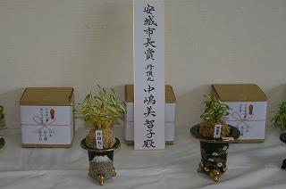 201110-IMGP3090