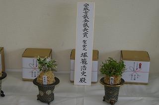 201110-IMGP3091