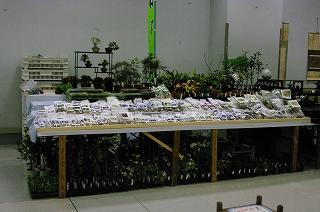 201111-IMGP4994
