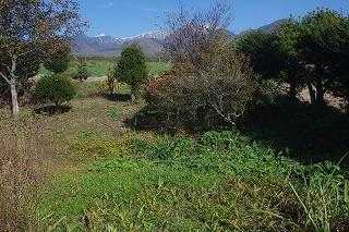 201210-imgp6964