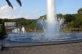 201211-IMGP7245